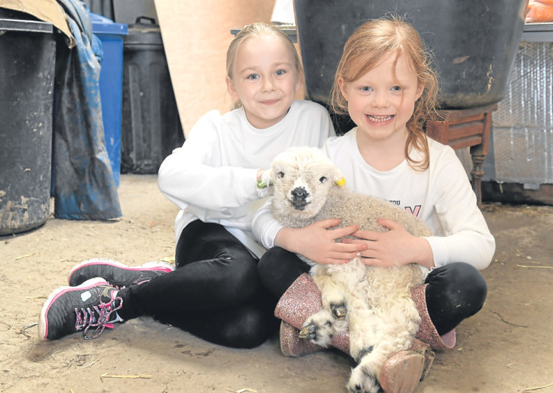 Miley Leslie and Tilly Begbie with new lamb Daisy.