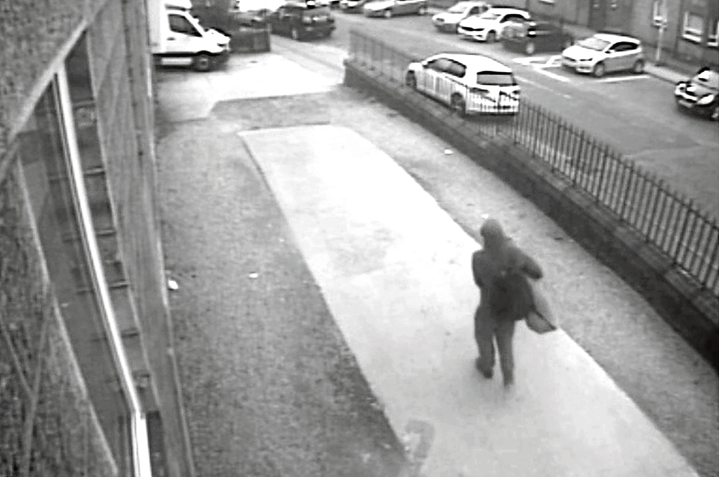 A CCTV image shows a man carrying a large holdall around the time of the theft.