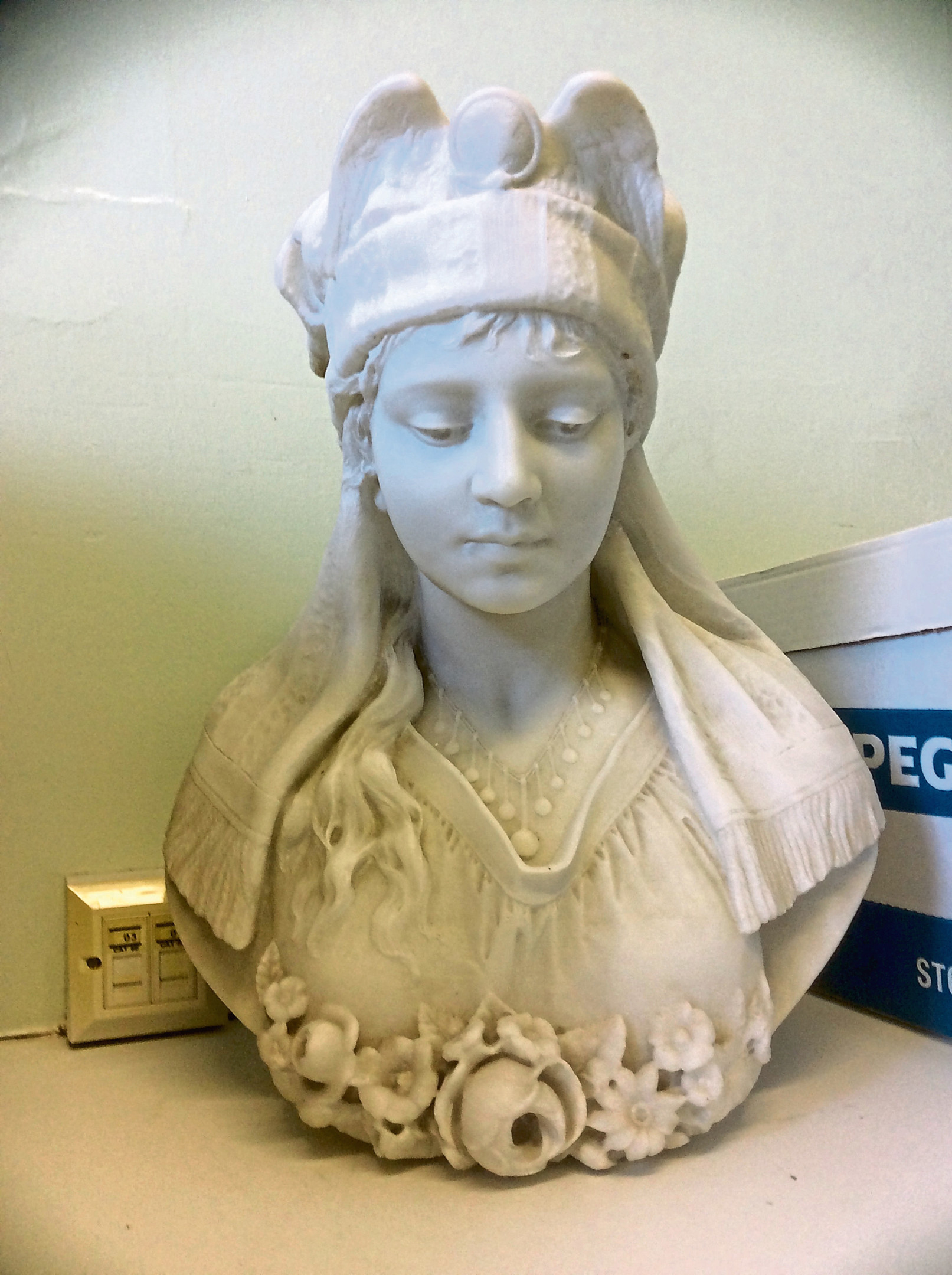 Montrose Infirmary is seeking infomation on the subject of the marble bust.