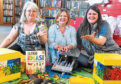 Catherine Cowie, Fiona Galbraith and Heather Rosa at the library.