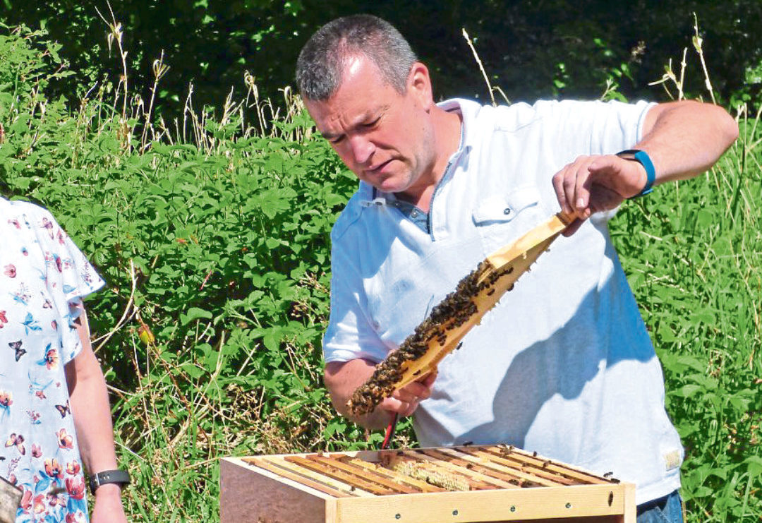 Beekeeper Stiliyan Georgiev
