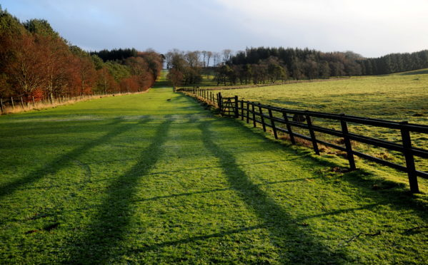 An outdoor nursery is mooted for Haddo Country Park
