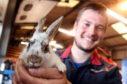 Dave Gordon with the rabbit he named Derek