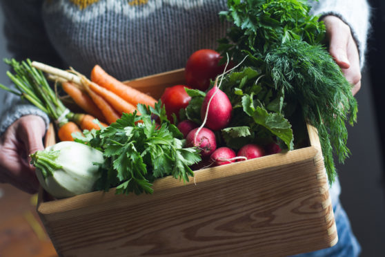 This category looks to highlight the best local produce retailers.