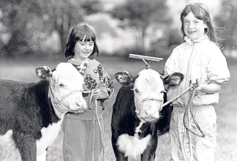 Karen, left, 7, and Hazel Watt, 8, daughters of Echt Show president Ian Watt, with Hereford cross Friesian calves