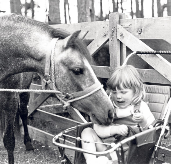 Beverly Sharp, 2, from Castleton, King Edward, with two-year-old filly Baden Scoth Bijou