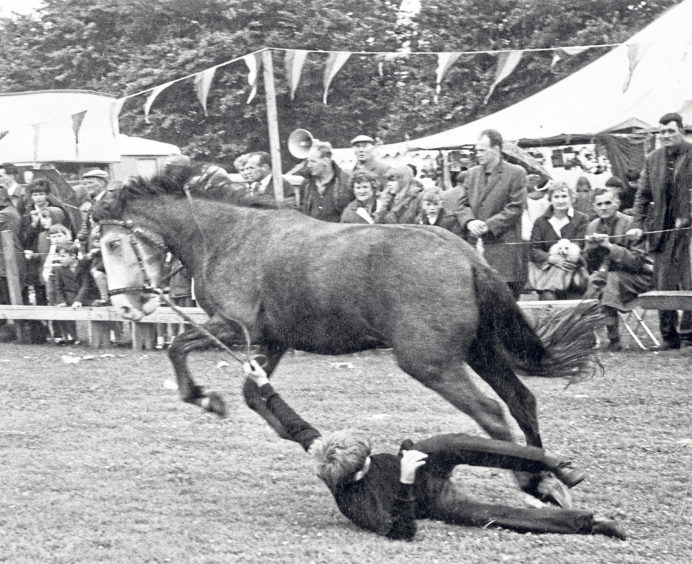 Derek Burnett, from Aberdeen, being dragged along the ground after falling from a pony during the show. Thankfully, he was unhurt