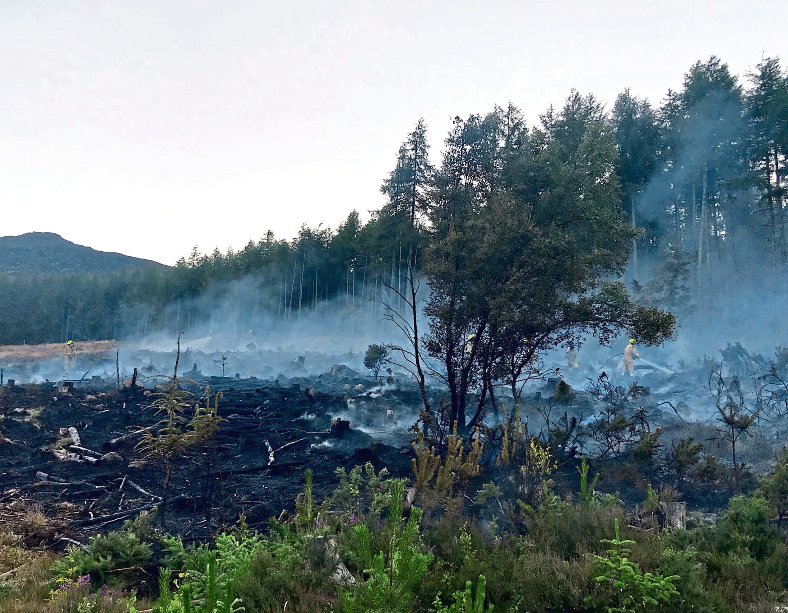 Firefighters attended a blaze at Bennachie