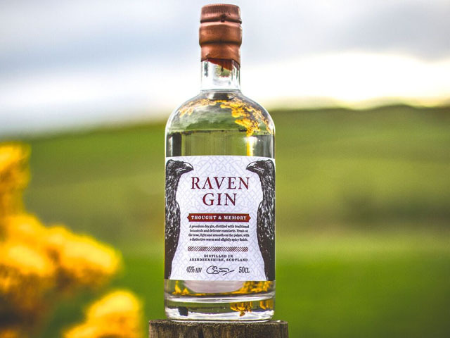 Raven Gin's Thought & Memory