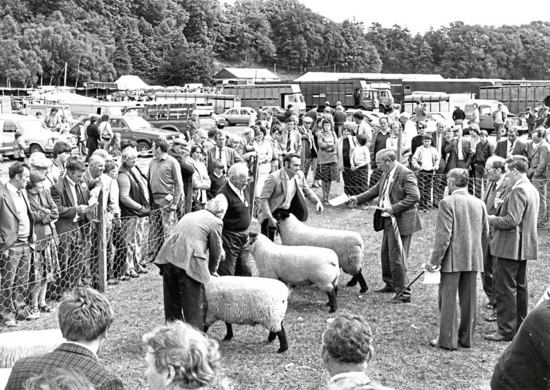 The sheep-judging ring proves a great attraction at Turriff Show yesterday