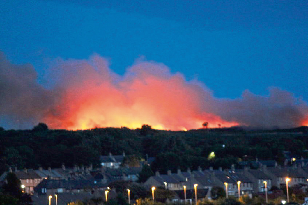 Firefighters have been called to a spate of fires at the Gramps nature reserve on Kincorth Hill
