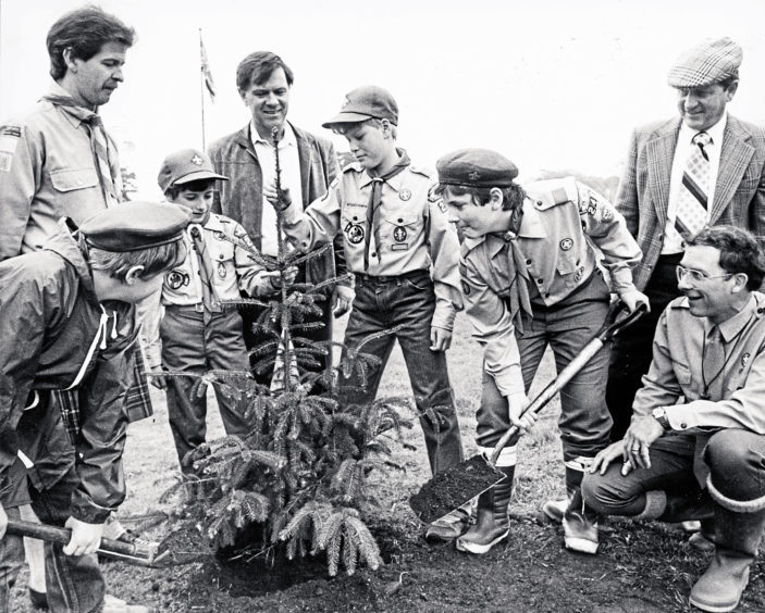 1985: Nick Chauvin, 12, of the 248 Scout Troop, based at the American School at Cults, planted a Sitka spruce as his civic project to earn a Star Scout badge