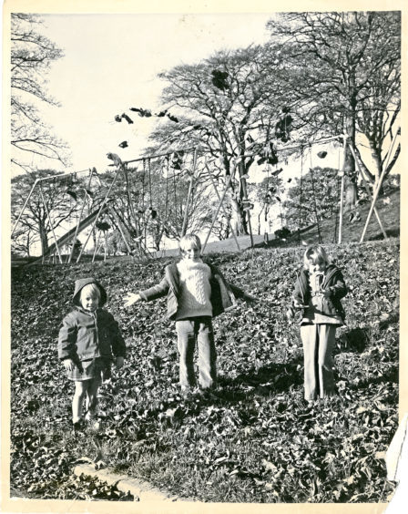 1970: From left, Peter, Susan and Julie Millar have a ball playing in the fallen leaves at Duthie Park in October 1970