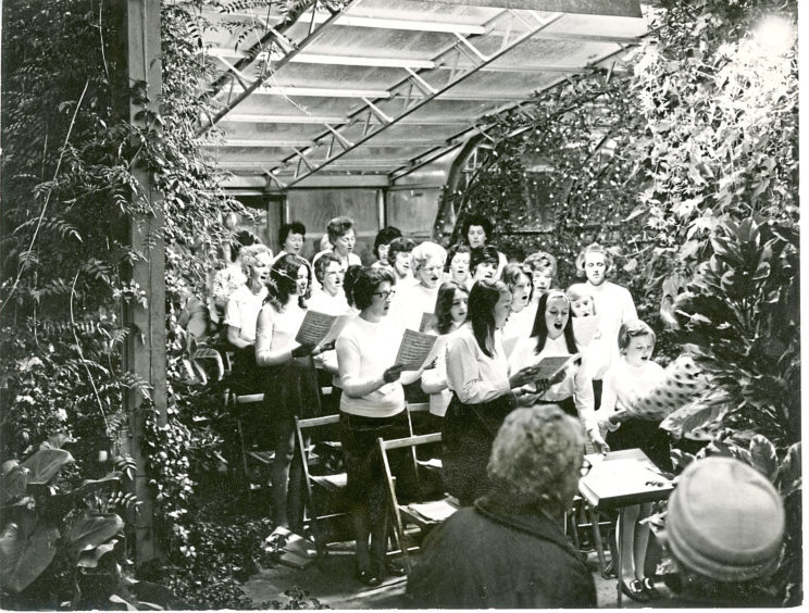 1972: The Hartley Singers provided the programme at Duthie Park for the opening of the third Candle Festival in September 1972