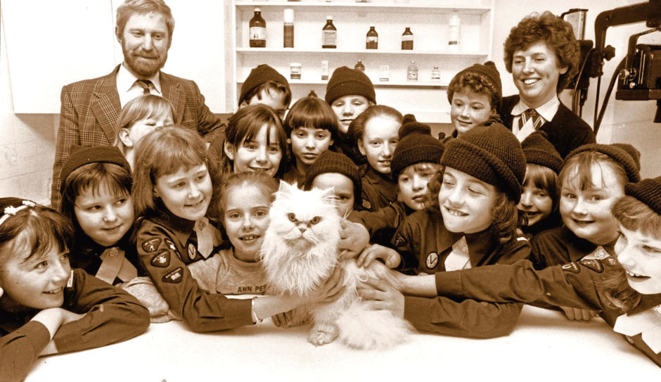 1988: Mizpah the cat was the centre of attention when the 22nd Pack Brownies visited the veterinary clinic at Rubislaw Park Road, Aberdeen