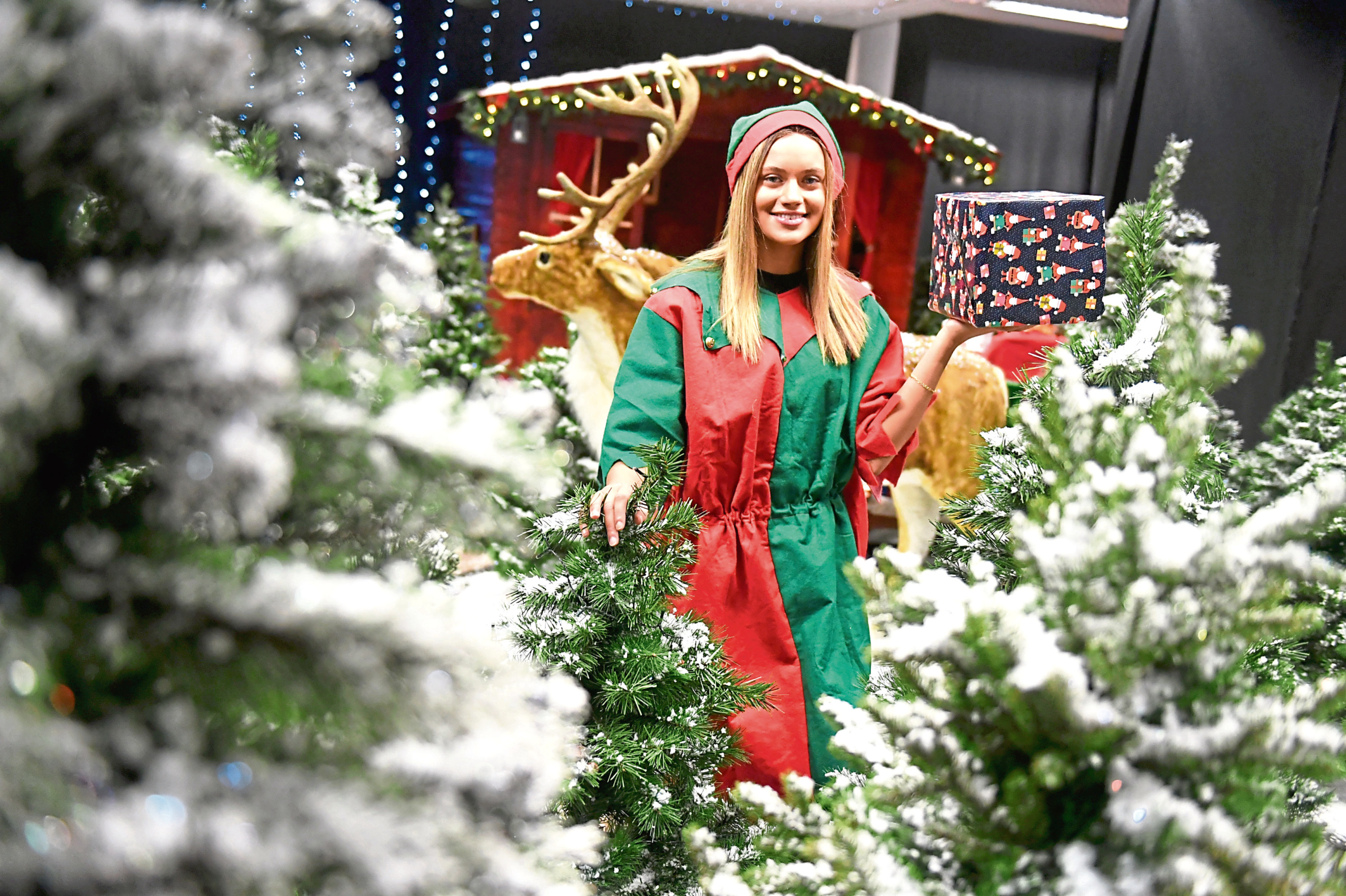 Ellis Haly-Mackenzie, from the Archie Foundation, getting Santa's Grotto at the Bon Accord Centre ready