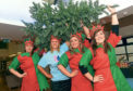 CLAN Cancer Support has launched an appeal for unwanted artificial Christmas trees. From left, Lisa Sisson, Steph McCann, Ruth McIntosh and Amy Piggot