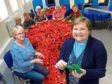 Trinity Church, Westhill. Local parishioners have knitted 7,500 poppies to mark Remberance Day. From left, Aileen Reid, Rona Ritchie, Linda Davidson, Mary Dryden, Sheila Watson, Margaret Glascodine with Reverand Stella Campbell.  25/10/18 Picture by KATH FLANNERY