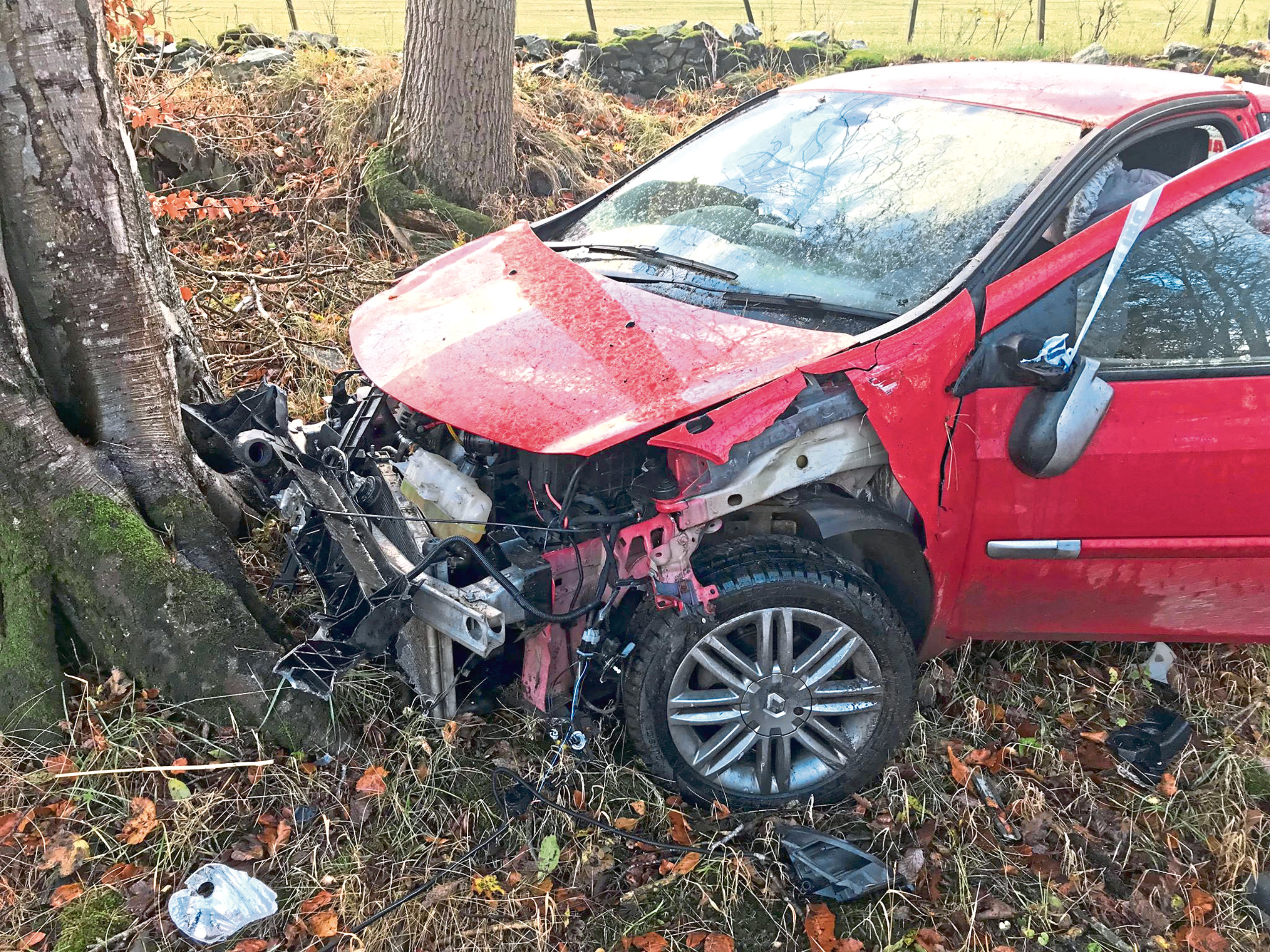 Millie's wrecked Renault Clio