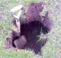 The sinkhole at St Machar Academy playing fields