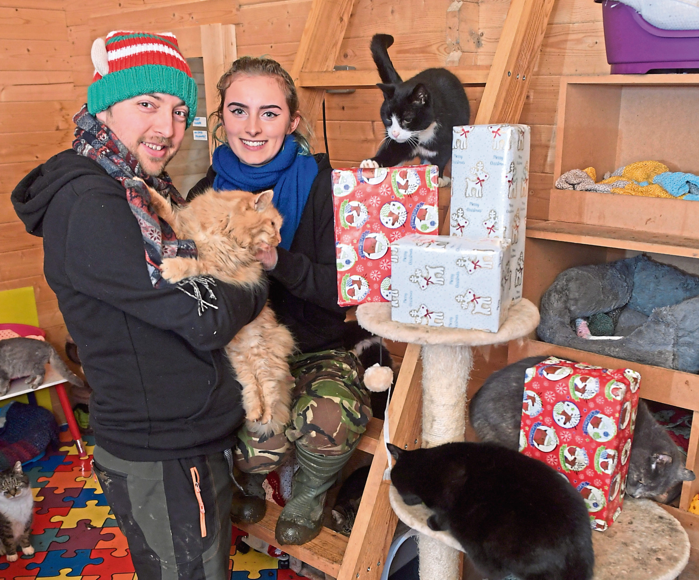 This year the New Arc Rescue Centre are making a Chrsitmas dinner for all the animals in their care