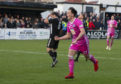 Ayr's Lawrence Shankland celebrates his goal.