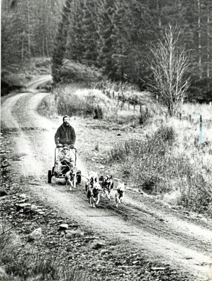 1990: John Coynce training on Lower Deeside for a Siberian Husky Club of Great Britain race