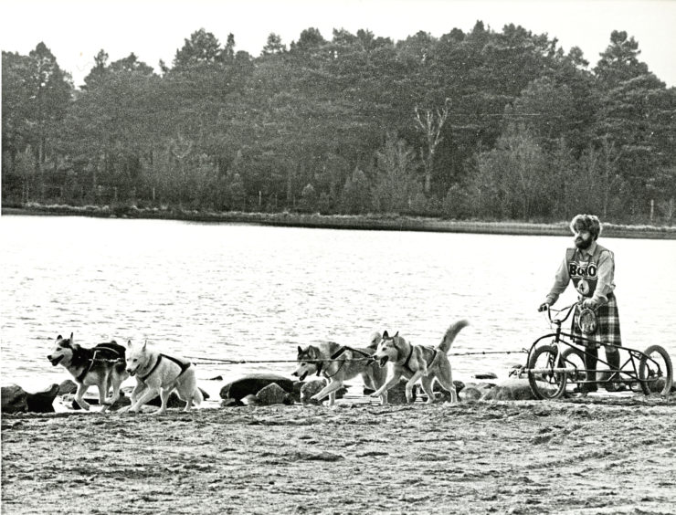 1989: Kilted John Evans, race organiser of the Siberian Husky club of Great Britain snow rally, exercises his dogs on the shores on Loch Morlich