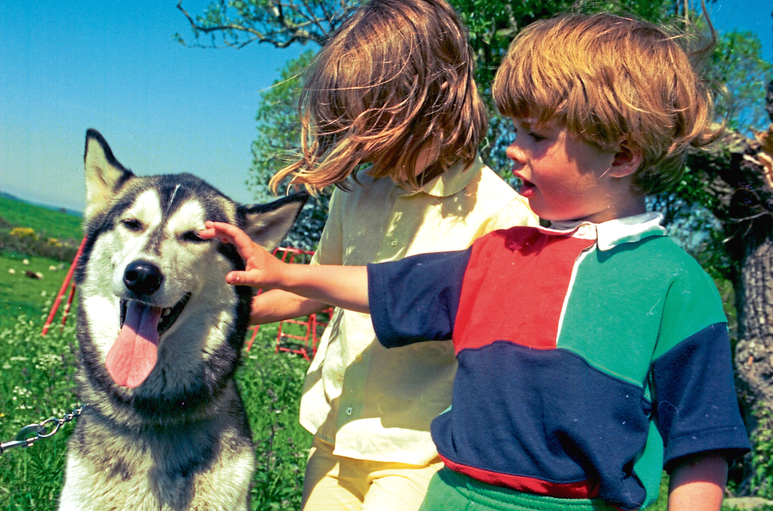 1995: Nanook the husky with Kerry and Liam Rowles as a search was under way for a surrogate puppy