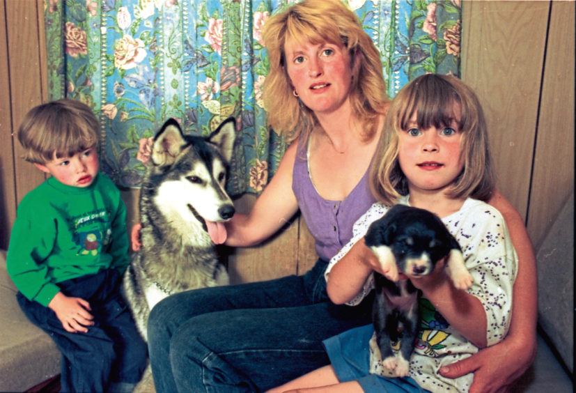 1995: Ten-day-old cross Collie Jenny was welcomed into the Rowles family by husky Nanook thanks to coverage by the Evening Express. The husky had refused to eat after her own one-day-old pup died