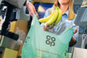 The new compostable carrier bag