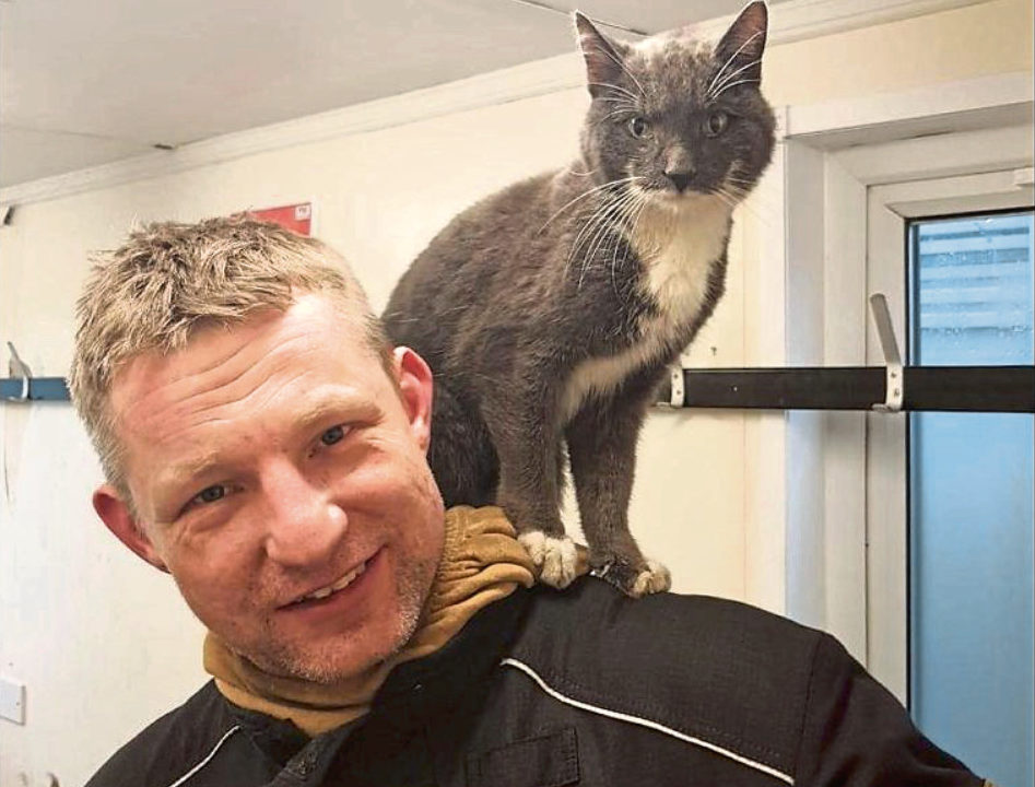 Rhu went walkabout for five weeks, before being nabbed by a group of fire trainers.