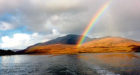 A pot of gold in the shape of a bottle of single malt amber nectar can be found locally