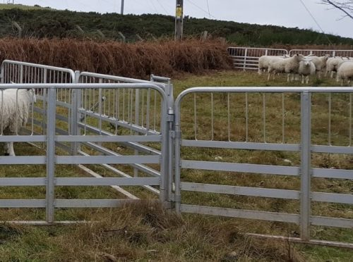 The fencing was stolen from Millden Farm near Balmedie