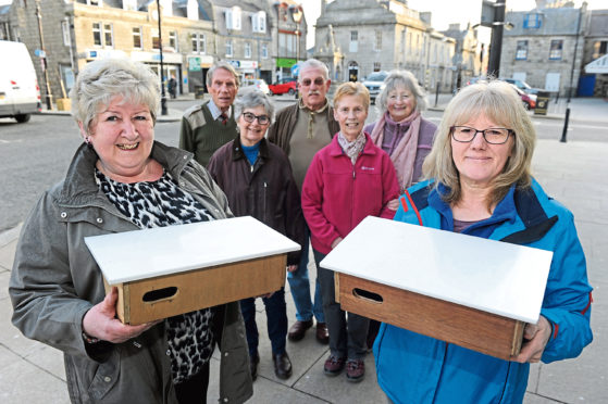 The Huntly Swift Group are looking to aid the bird population, which has dropped by 50% in the past 20 years.