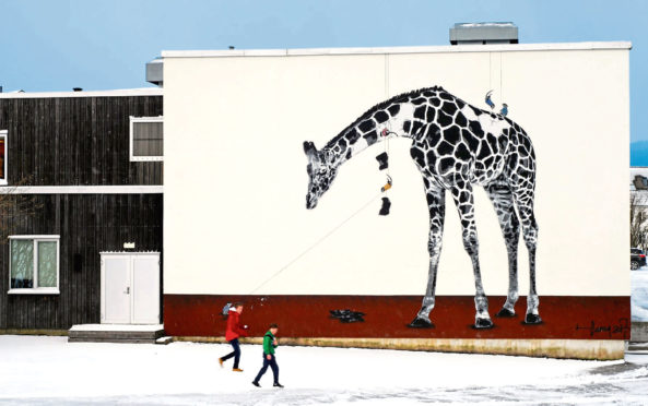 Norway-based artist Hama Woods will soon be bringing artworks like this to the walls of Aberdeen