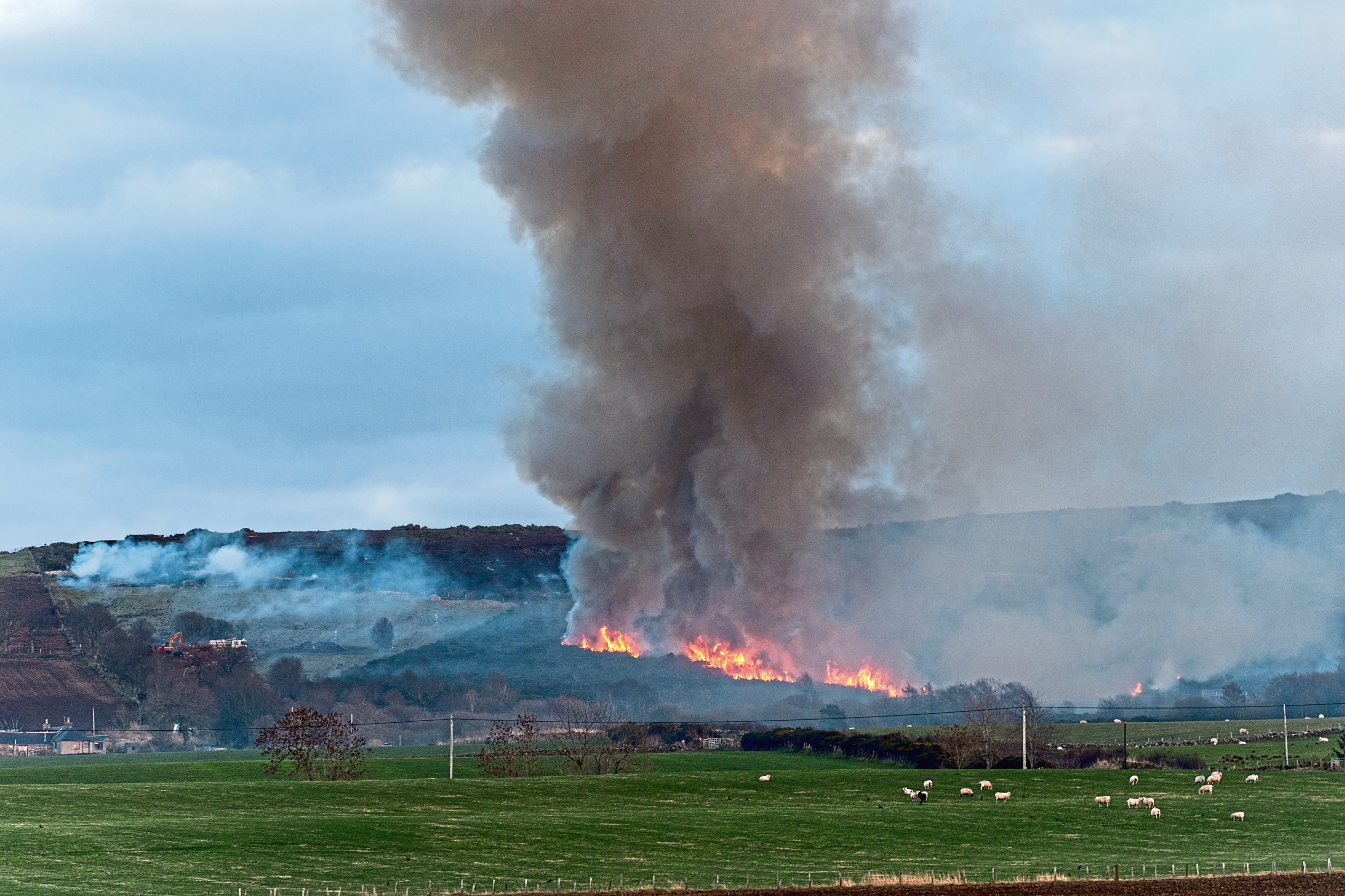 The scene of the gorse fire which broke out near Banff