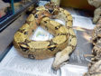 Snake Esmerelda, who was taken into the care of the Scottish SPCA afterwards, had to be destroyed