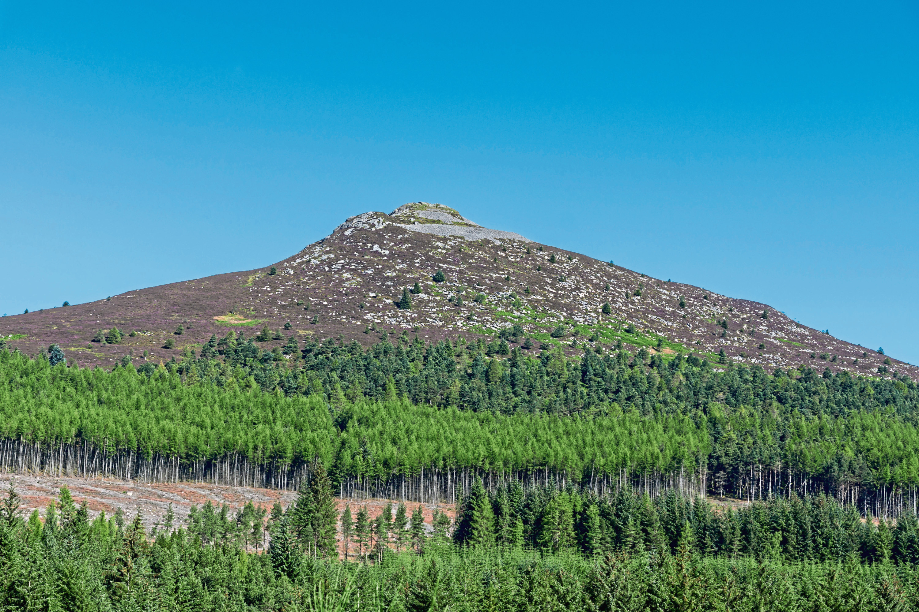 The remains of the former Maiden Castle, once owned by a prince, were found on the slopes of Bennachie