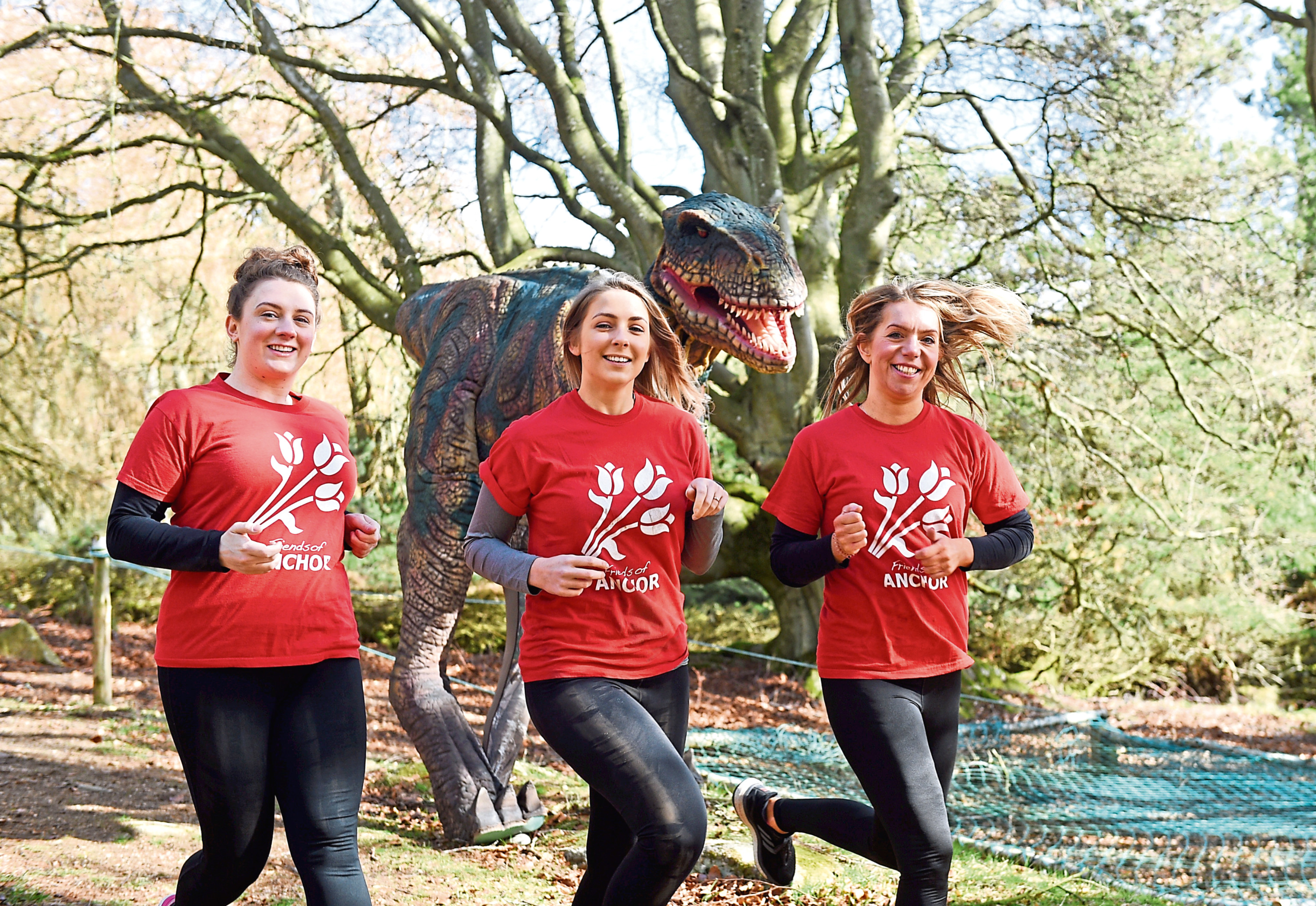 Participants will have to dodge a life-size T-rex as they navigate obstacles in Glack Attack