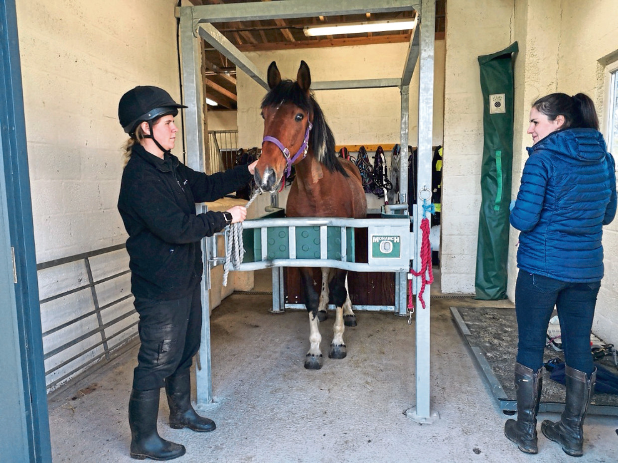 Scottish SPCA has unveiled the expansion to their equine vet room