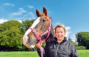 Gillian Anderson pictured with her horse Kia