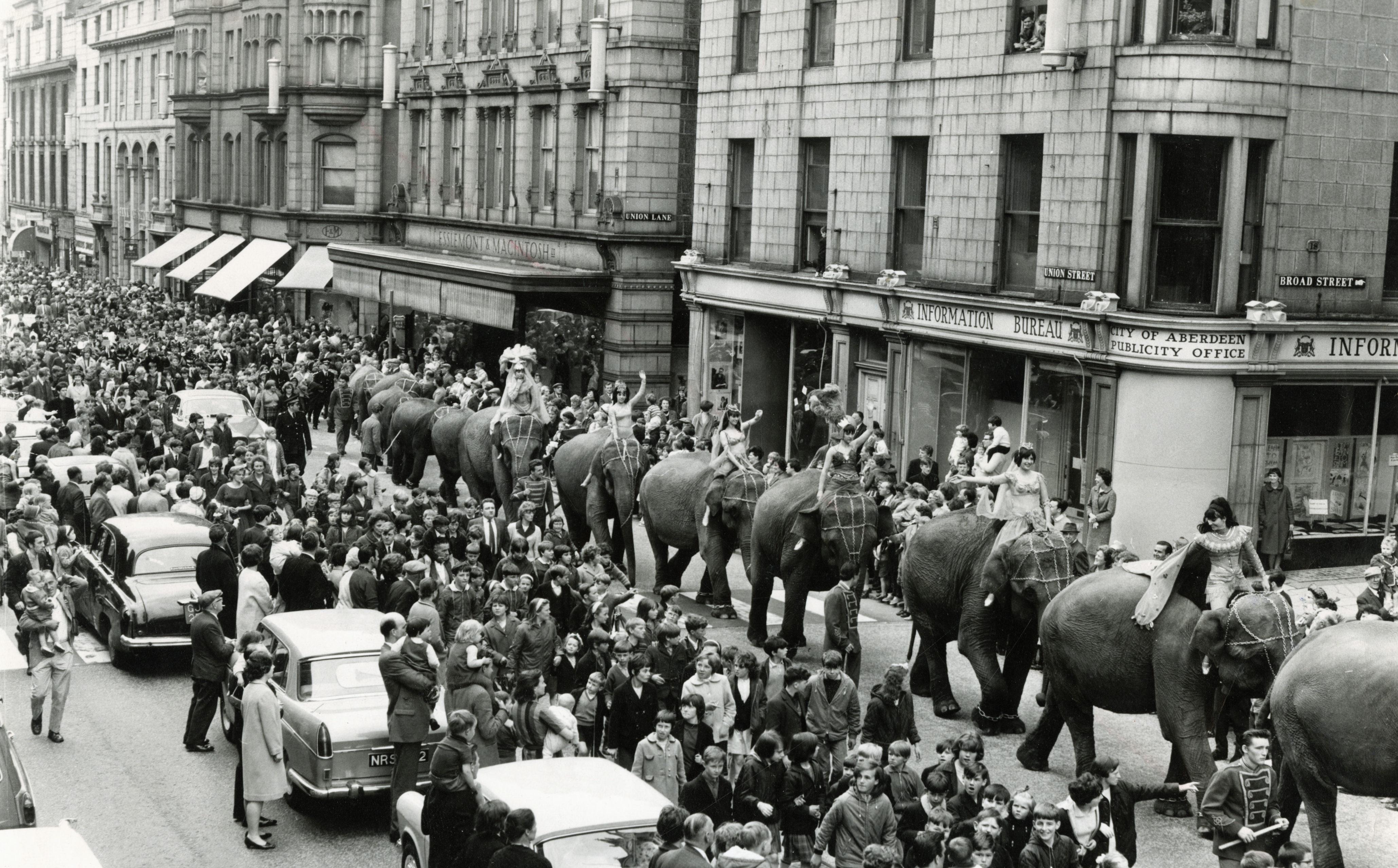 Billy Smart's elephants parade along Union Street