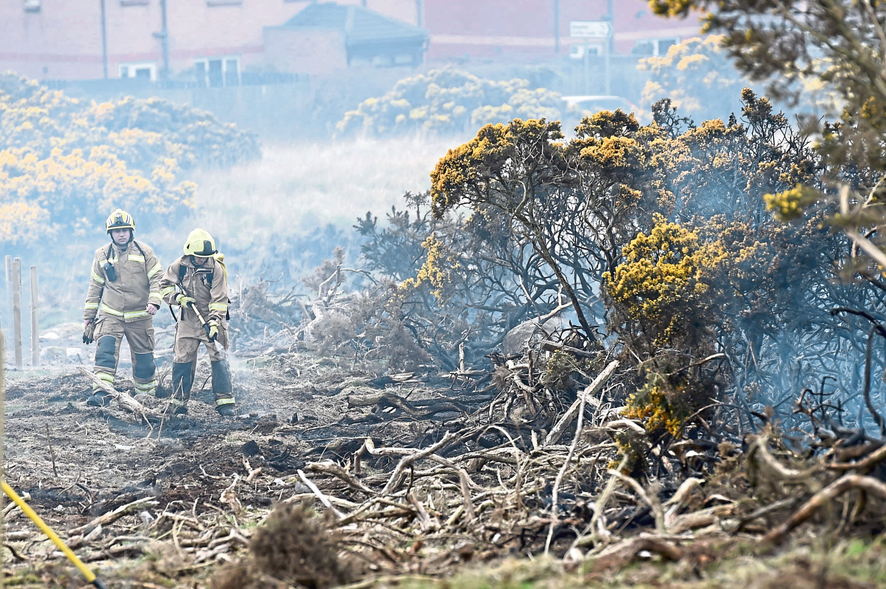 Firefighters dowse flames at Scotstown Nature Reserve.