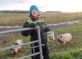 Marie Thomson set up Farming in the Field to teach children and elderly groups about where their food comes from and offers an interactive experience with the farm's pet pigs, Pinky and Dotty