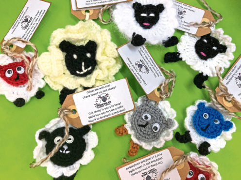 The congregation at St Columba's Church has created 70 woolly creatures as part of its Christmas Sheep Trail