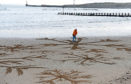 Carer Dougie Bogie creating a sand picture on Aberdeen Beach