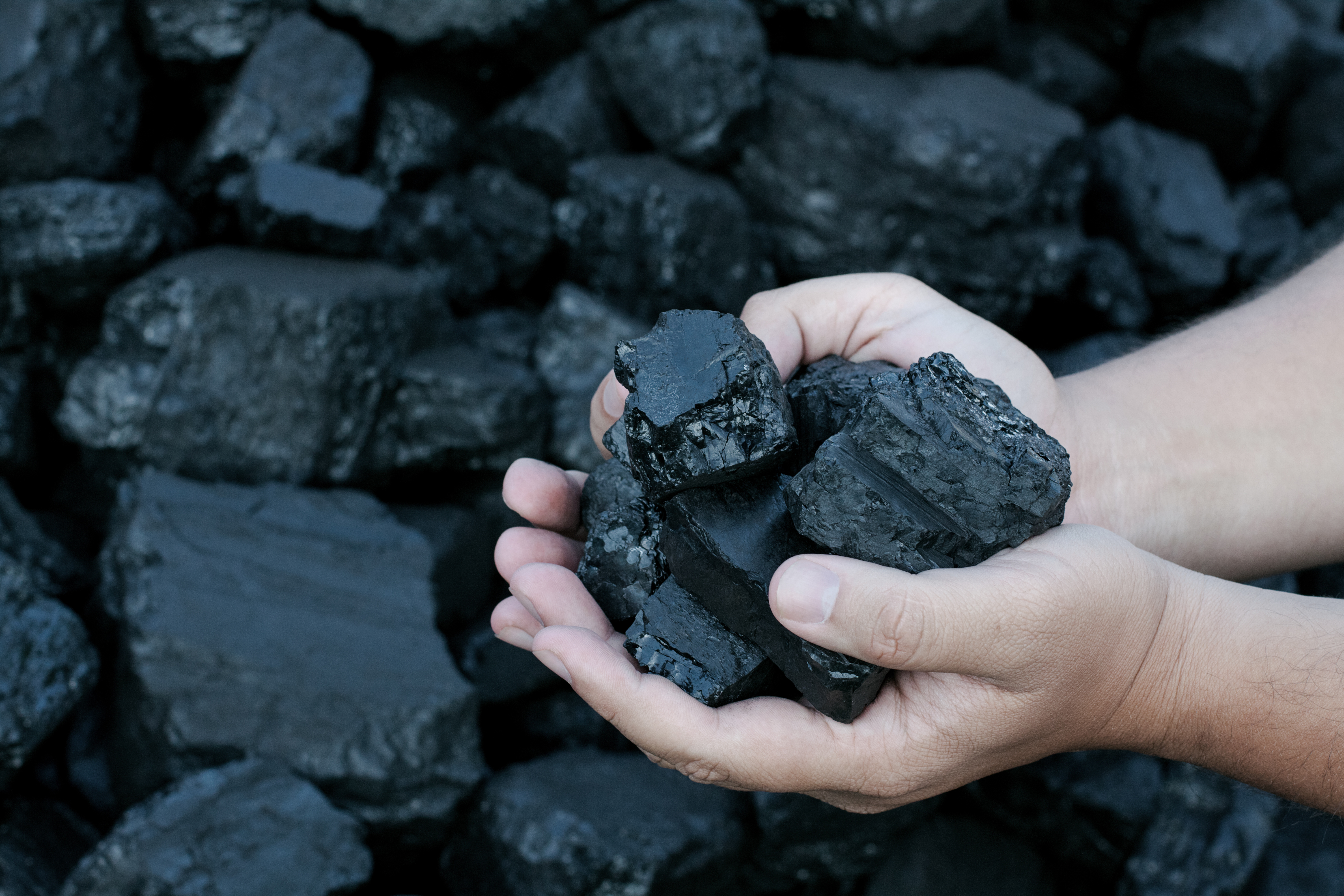 Lidl stores across the city will be handing out coal