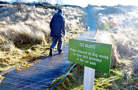 Locals say there is a big dog poo problem at Newburgh Beach, despite there being wheelie bins there to dispose of the bags in