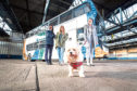 Jacquline Poyer-James from Birmingham, Bea Graham from Dundee and Aislin Smith from Glasgow with her dog Faith in front of the bus